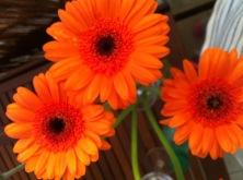 art du beau - fleurs
